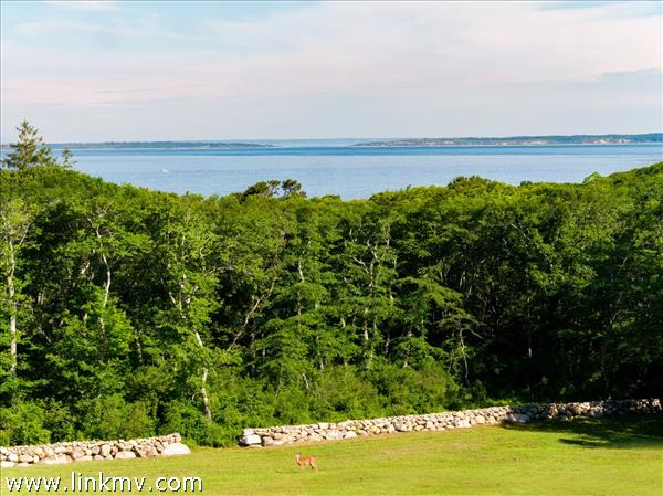 Chilmark Waterview Farm