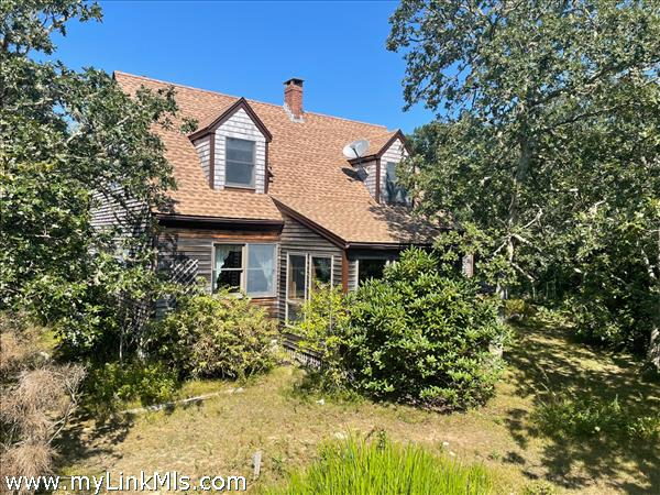 Large front yard with lots of mature plantings!