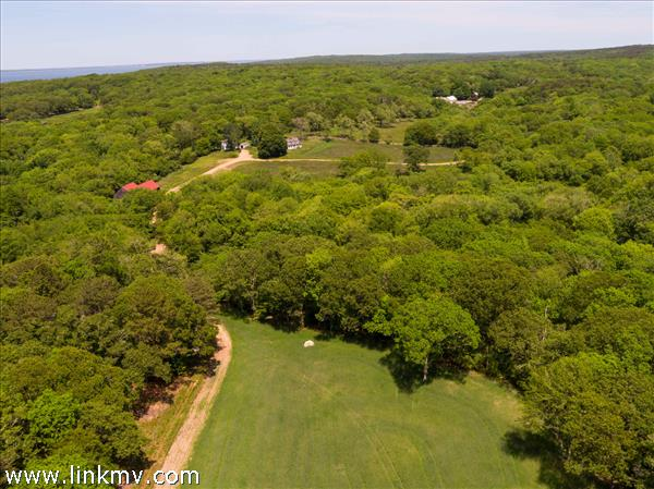 Cagney Estate Chilmark aerial