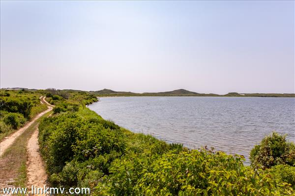Squibnocket pond and dunes along way to beach.