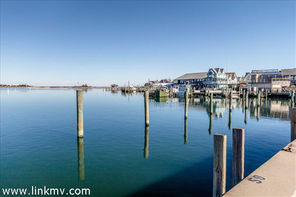 Walk .56 mile to Oak Bluffs Harbor and everything downtown has to offer, restaurants, water sports, shopping, the Flying Horses and Ocean Park.