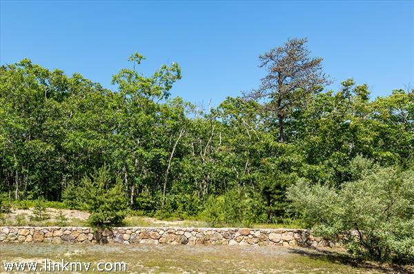 20 Paddock Road (Lot #9) Oak Bluffs MA