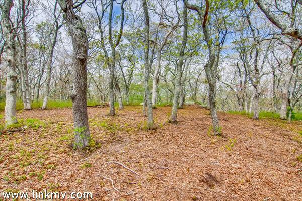 Chilmark land for sale