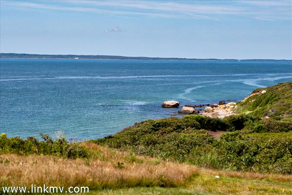 Bluff View to Woods Hole