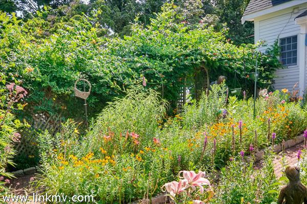Established courtyard garden