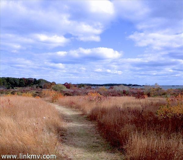 49 Waterview Road Oak Bluffs MA