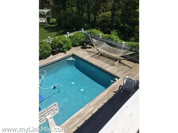 Gunite pool and hammock