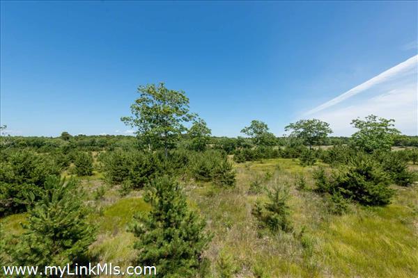 36 Paddock Road (Lot #16) Oak Bluffs MA