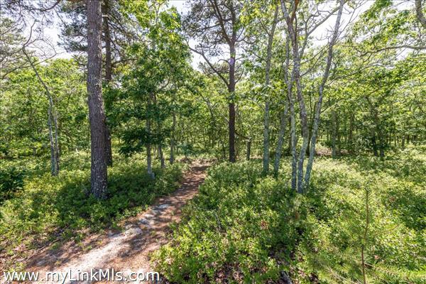 40 Paddock Road (Lot #18) Oak Bluffs MA
