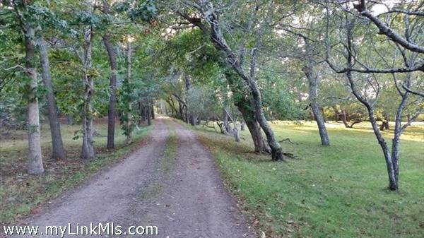 9 Lenssen Way Edgartown MA