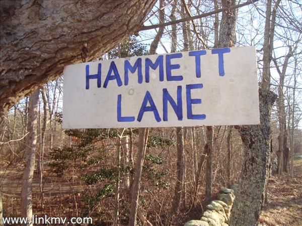 96 Hammett Lane Chilmark MA