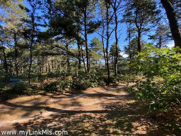 37 Plain Field Way Edgartown MA