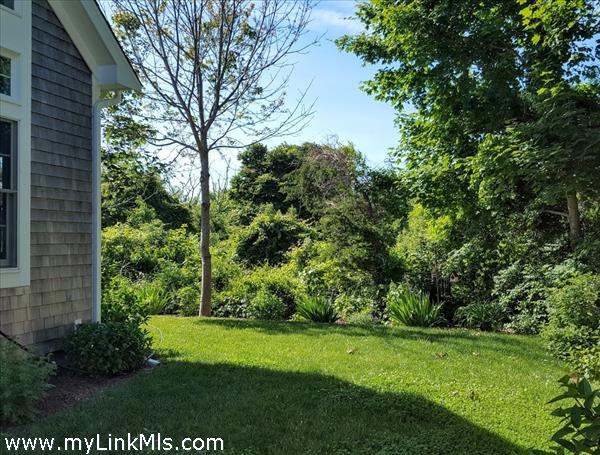 Side yard with mature landscaping and privacy.