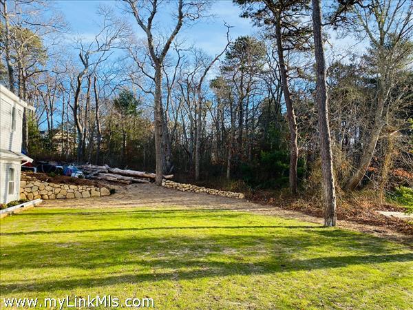 back yard with stone pathways